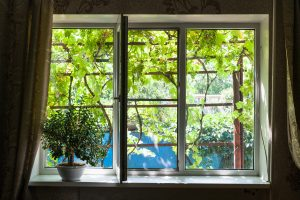 Casement Window Orlando FL